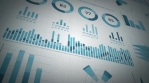 Business Statistics, Market Data And Infographics Animation Loop