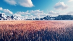 Mystical view, unusual grass, blue sky with clouds, morning sun and mountains in the distance.