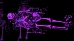 Seamless animation of a colorful broken skeleton. Cool Halloween background