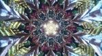 13-Mystic Experience-Mandala trippy beautiful colorful ethnic ornaments.mov