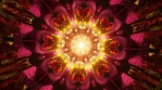 14-Mystic Experience-Seamless Psychedelic 3D animation of abstract mandala.mov