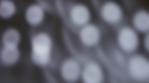mirrorball_wall4k 00.mov