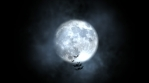 Halloween spooky moon background with bats flying
