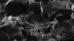 BLACK FREQUENCY [INTRVL]