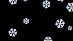 Cartoon snow flake falling on a black background