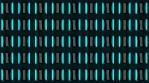 Wall of Neon Lights 12