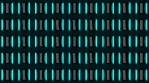 Wall of Neon Lights 05