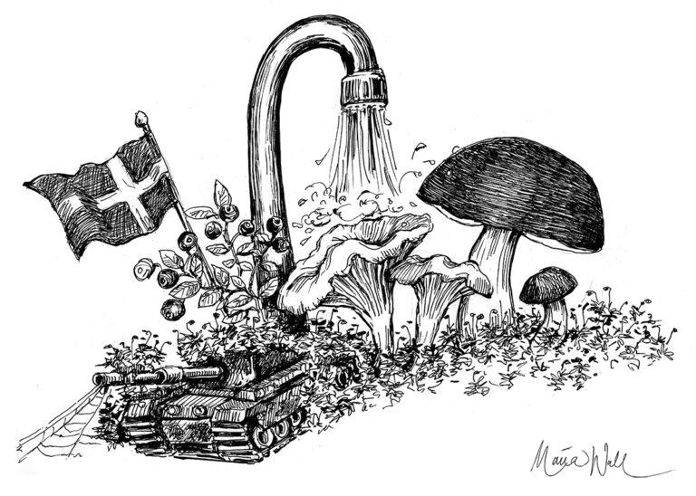 Tolv skäl att digga Sverige!