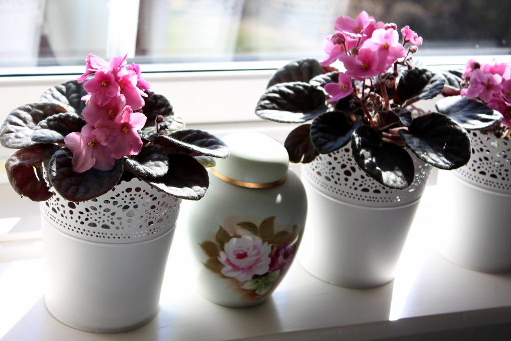 3-blommor, förskolans dag 089