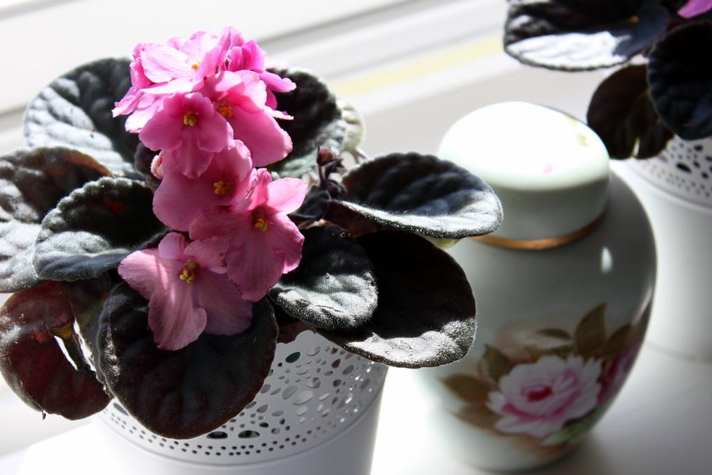 4-blommor, förskolans dag 090