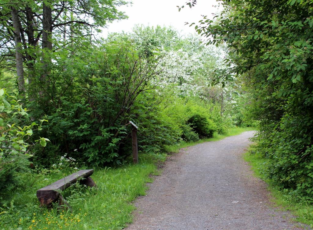 1-arboretum norr 001