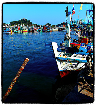 Phuket harbour