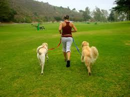 En kvinna springer med två hundar