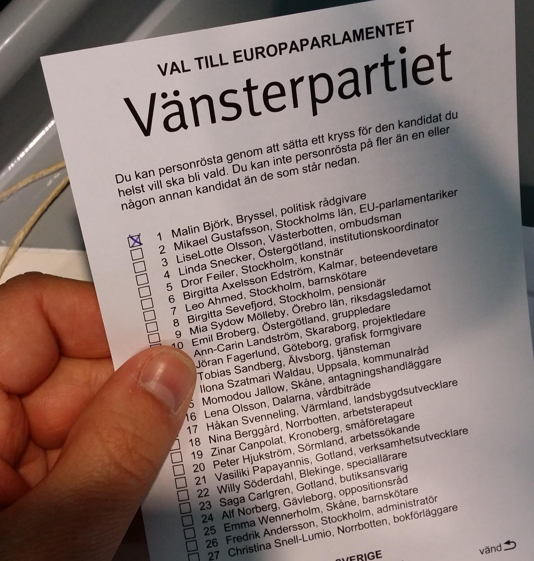 Röstat i Europaparlamentsvalet