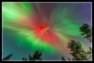 Foto Tomas Andersson