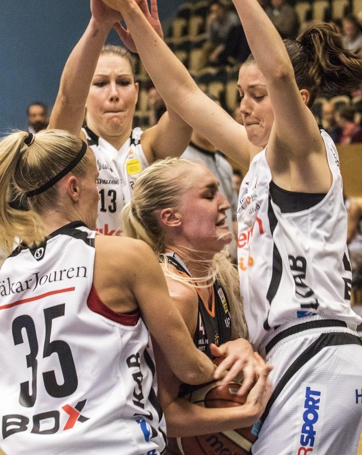 Basket-  Udominate - Luleå
