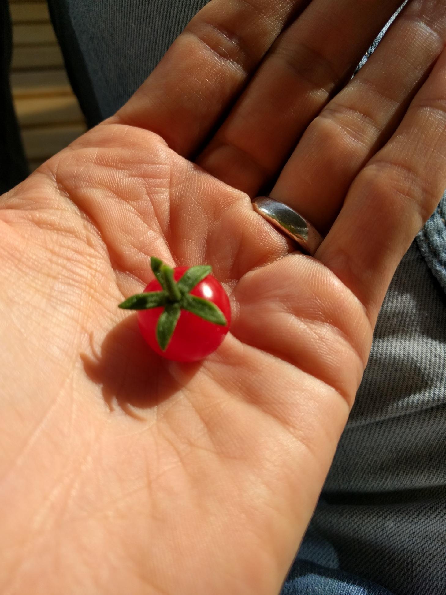 All jordens lycka blommar ur små och enkla ting