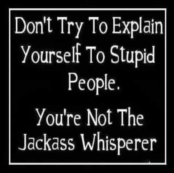 Dont_Try_to_Explain_Yourself_to_Stupid_People__42129.1405426399.1280.1280