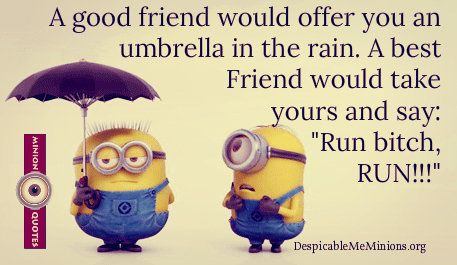 Funny-Friendship-Quotes-A-good-friend-would-offer-you-an-umbrella
