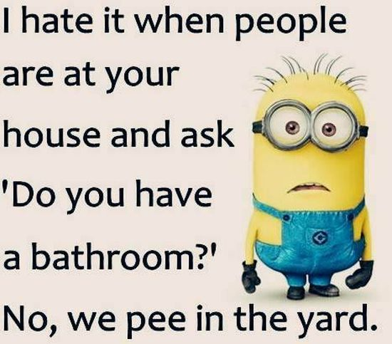 funny-minion-quotes-images-and-friendship-minion-quotes-6