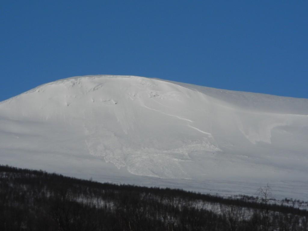 DSCN7856