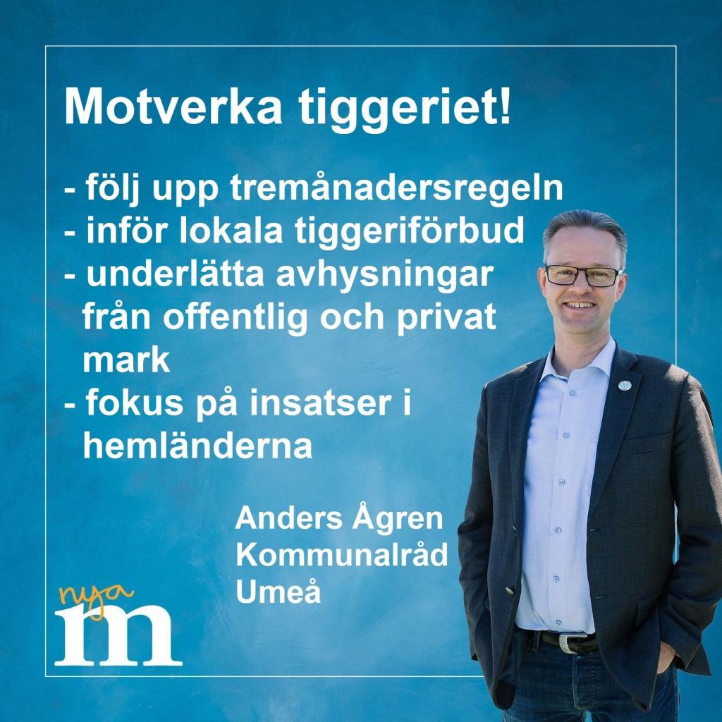 tiggeri