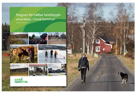 landsbygdsprogram