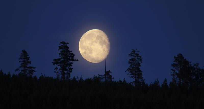 moon_8830