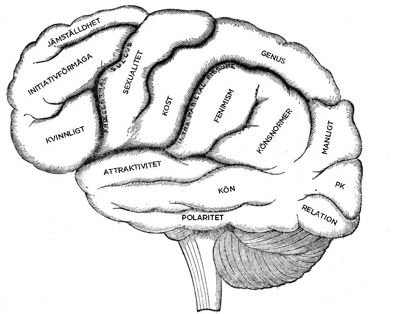 brain_bloggen