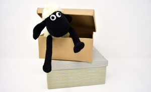 sheep-3110010_1920