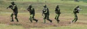Soldater_Revinge_2013