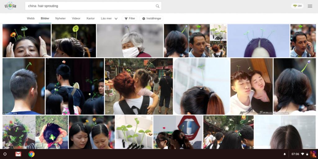 kina mode, kinesiskt hår mode