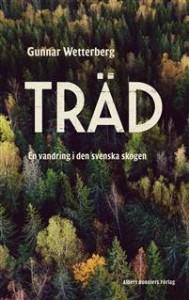 trad-en-vandring-i-den-svenska-skogen