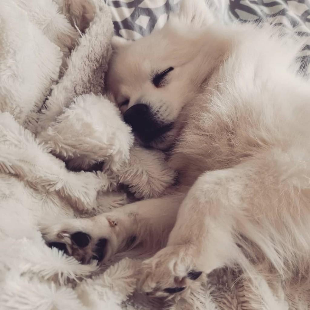 Nanna sover