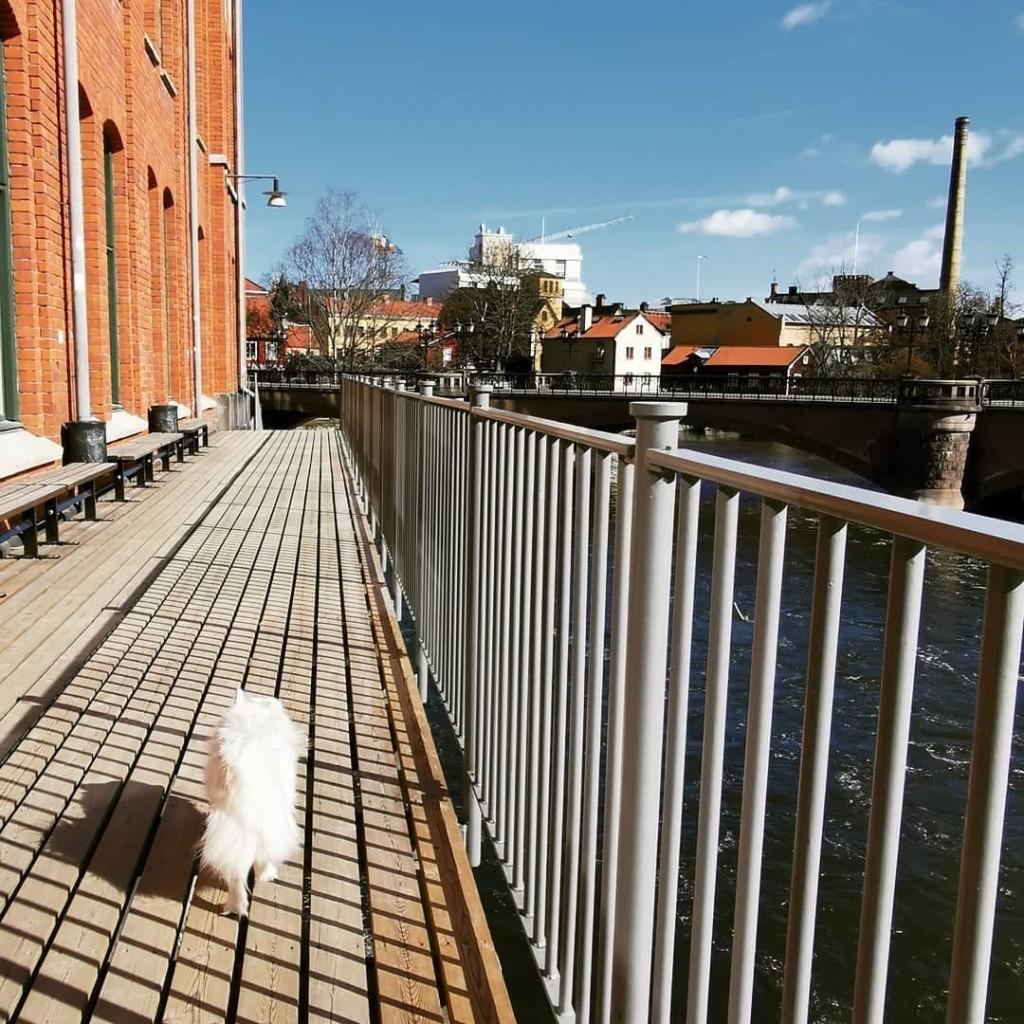 Nanna på äventyr i Norrköping