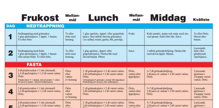 ledins vitaminfasta schema
