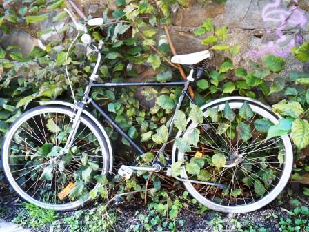 cykeln5
