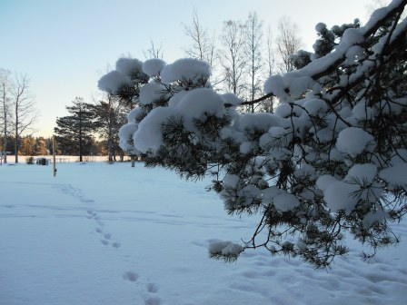 vinterbilder2