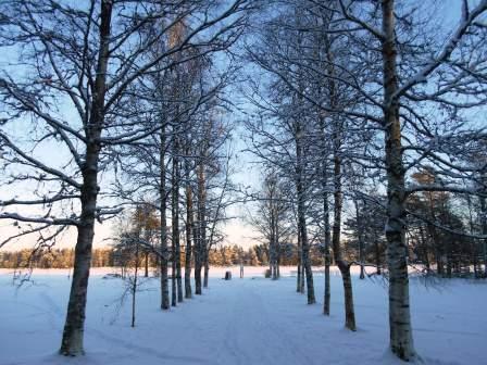 vinterbilder3