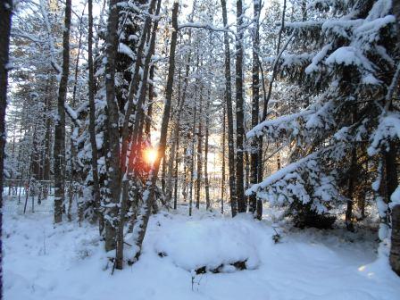 vinterbilder6