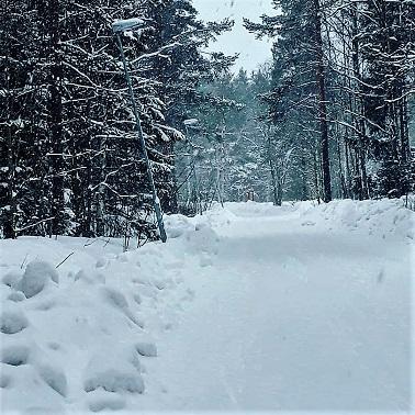 vinter4