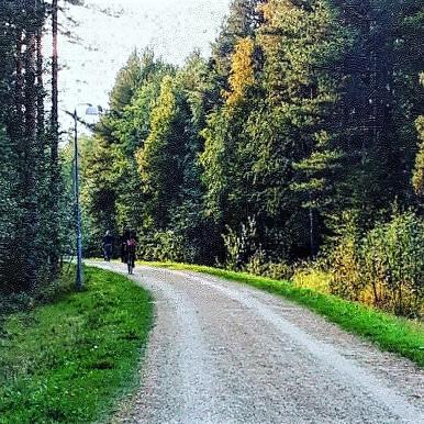 skogsvagen2