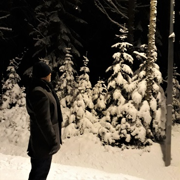vinterskog4