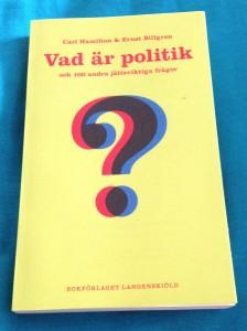 Politik för dummies?