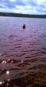Klart man badar när det är sommar!