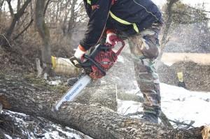 skogshuggare