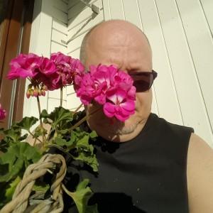 Kent blomma