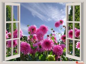 a-beautiful-day-174599_960_720