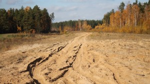 dirt-road-2414961_960_720