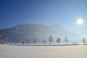 winter-586036_960_720